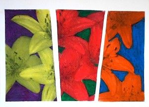 complementary colors on black and white photocopies of flowers. Colored with oil pastels- Grade 6