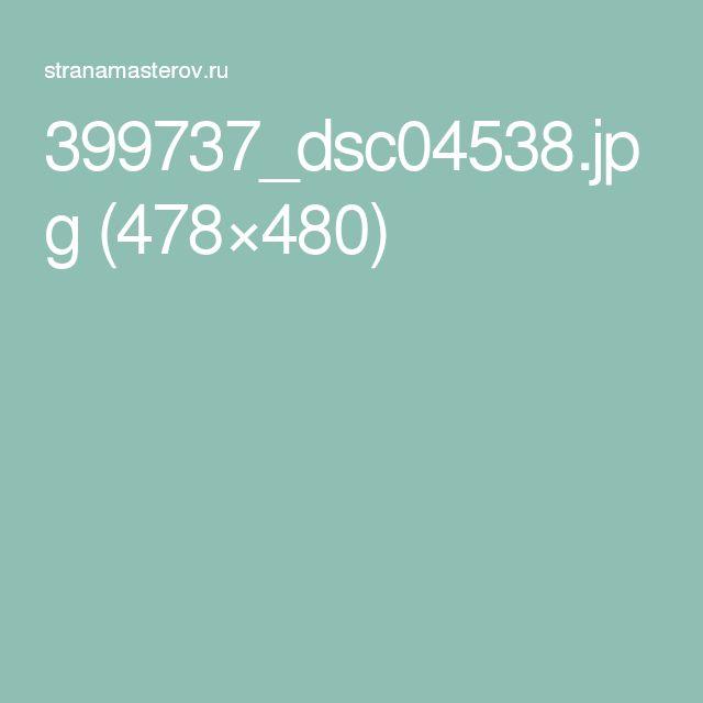 399737_dsc04538.jpg (478×480)