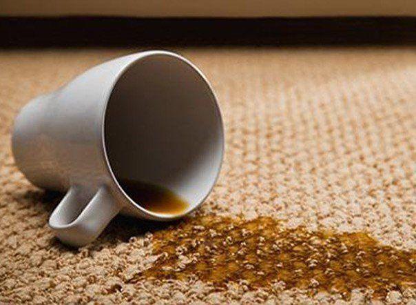 Чем выводить пятна на коврах? 1. От кофе, какао, чая — холодной водой с глицерином (1 столовая ложка глицерина на 1 литр воды). 2. Пятна от пива, вина, ликера выводят теплой водой со стиральным порошком. Намочите этим раствором тампон и потрите пятно, а затем смойте теплой водой с уксусом (1 чайная ложка на 0, 5 литра воды). 3. Если крем для обуви засох, добавьте несколько капель молока, он размякнет. При этом крем дает хороший блеск, лучше впитывается в кожу обуви. 4. Замок «молния» в…
