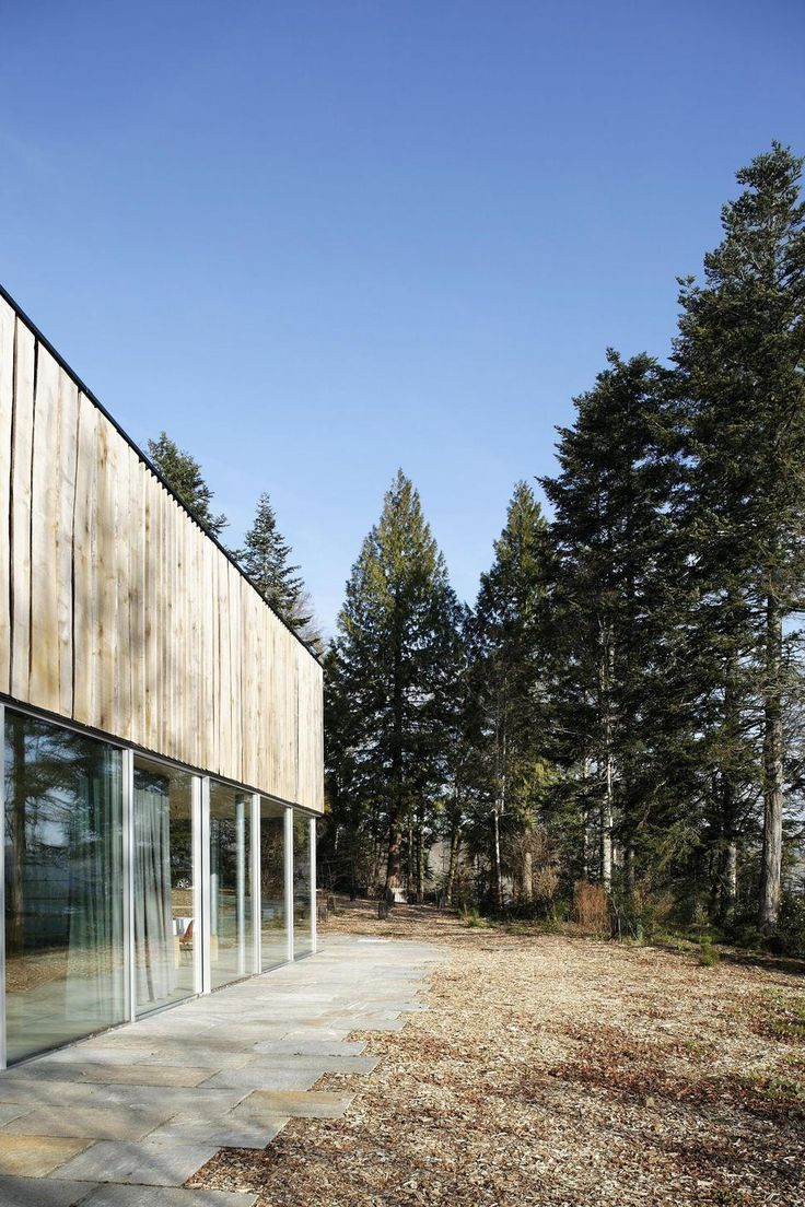 glass-living-edge-wood-clads-house-contrasts-6-exterior.jpg