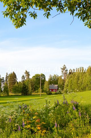 by Ann-Kristina Al-Zalimi, kesä, summer, meadow, niitty, mökki, cottage, pelto, field, maisema, landscape, fine art photography, finland, skandinavia, countryside, country, idyl