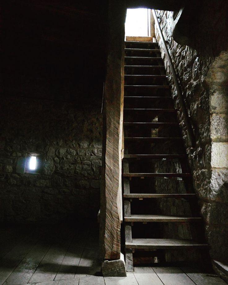 Segui la luce by askduca