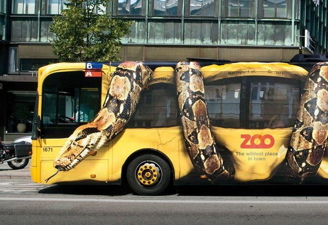 bus constrictor