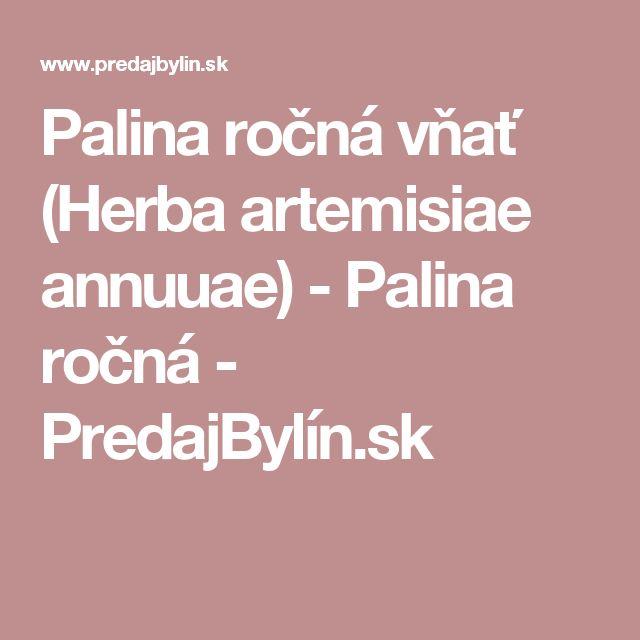 Palina ročná vňať (Herba artemisiae annuuae) - Palina ročná - PredajBylín.sk