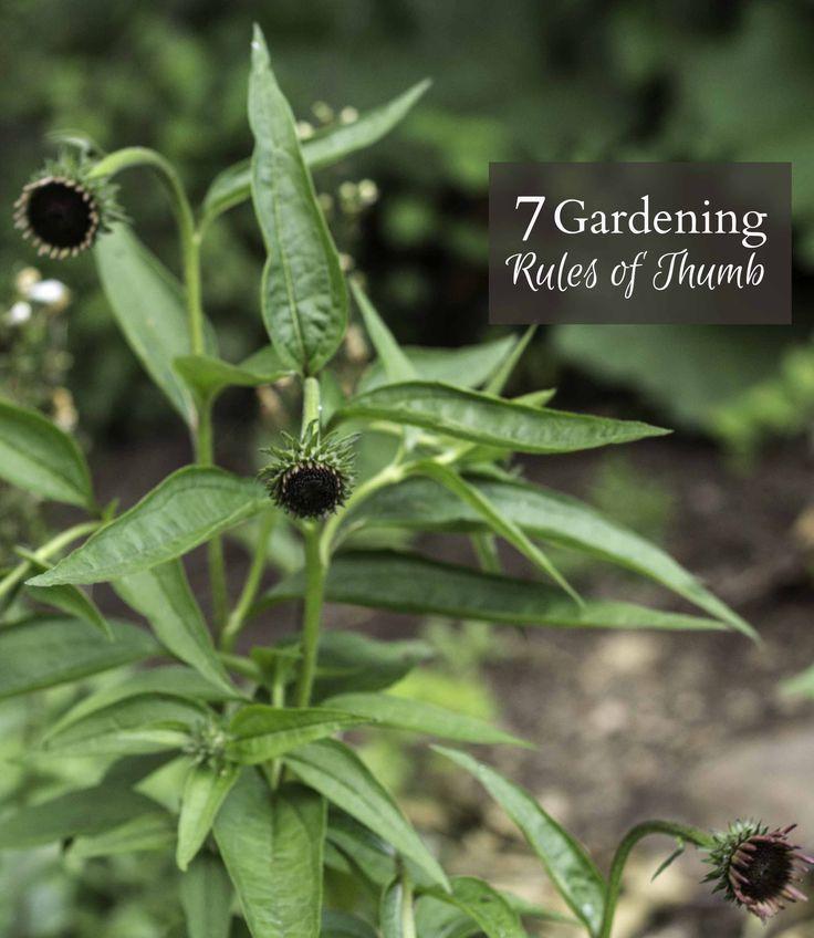 486 Best Herb U0026 Vegetable Gardens Images On Pinterest | Gardening,  Vegetable Garden And Veggie Gardens Part 66