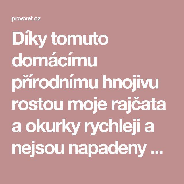 Díky tomuto domácímu přírodnímu hnojivu rostou moje rajčata a okurky rychleji a nejsou napadeny žádnou nemocí! - ProSvět.cz