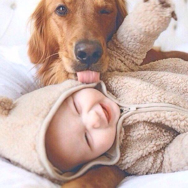 #child and dog #prince #small ...PUSH and choose ...Image 1 of 40