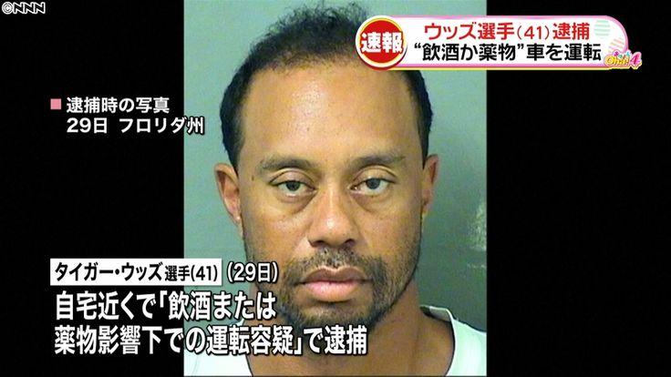 """""""飲酒か薬物""""車を運転 タイガーウッズ選手を逮捕 - 日テレNEWS24  #ゴルフ #タイガーウッズ #Golf #TigerWoods"""