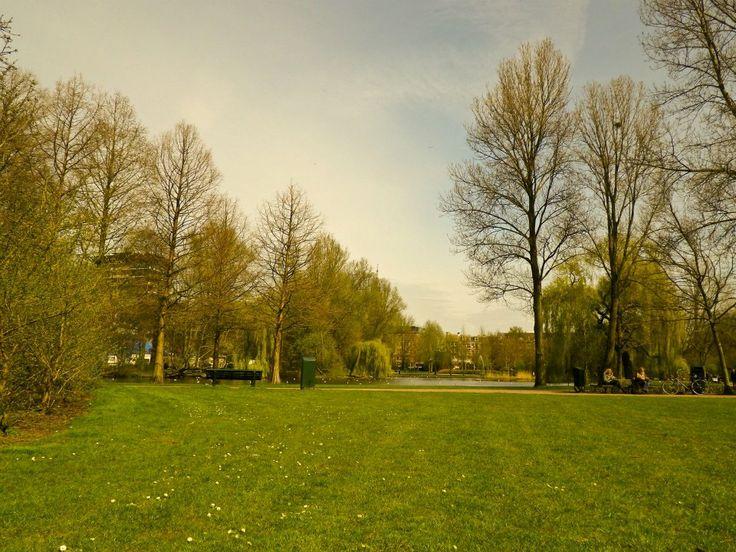 #europa #eurotrip #europe #amsterdam #travel #world #photography #holand #holanda #beautiful #love #park #green #parque