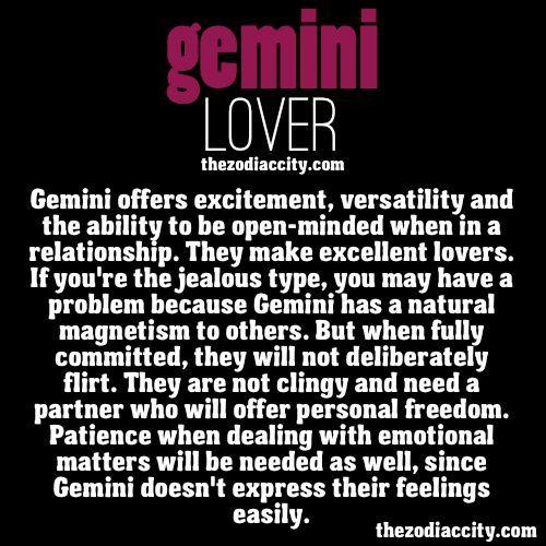 This is my sign, but I'm clearly not like this, right honey?...Honey?: Gemini Lovers, Gemini Me, Gemini Quotes Truths, Gemini Hd, Gemini Baby, Astrology Gemini, Gemini Pictures, Gemini Both