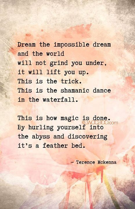 Dream the impossible dream and the world will not grind you under, it will lift you up. This is the trick. This is the shamanic dance in the waterfall. This is how magic is done. By hurling yourself into the abyss and discovering it's a feather bed. ~Terence Mckenna ..*