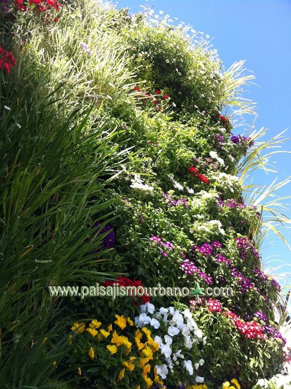 Mejores 10 im genes de jardin vertical tico murcia en for Paisajismo vertical