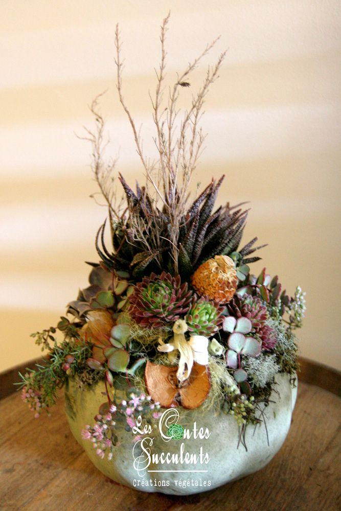 La Citrouille Verte - Les Citrouilles Succulentes - Idée décoration automne avec des plantes grasses, pour un mariage, une fête ou Halloween - Succulent Pumpkins - Fall decoration ideas - Wedding -