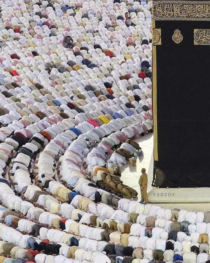 Masha Allah ❤️