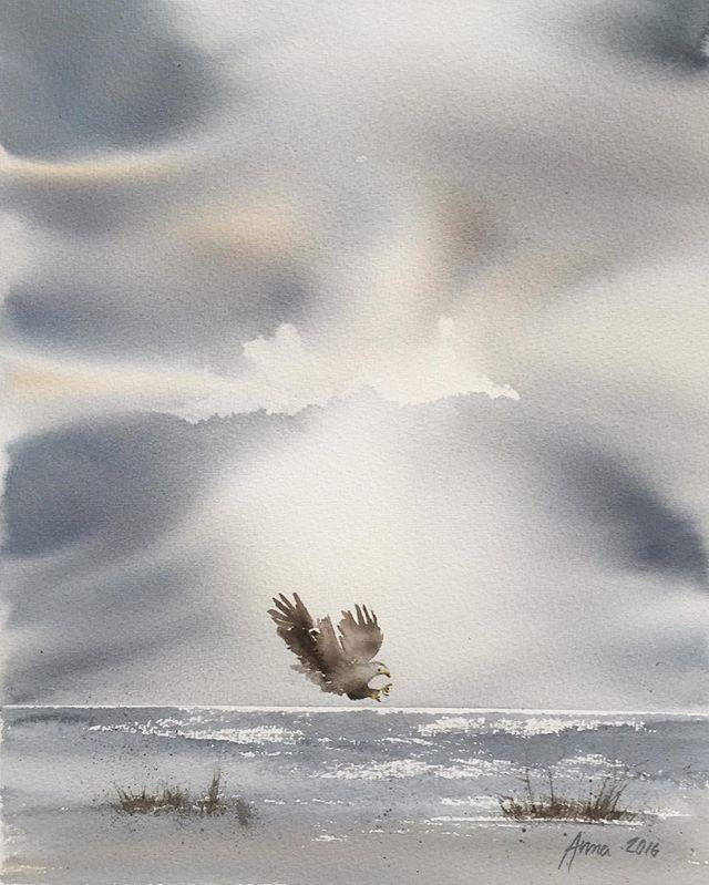 På väg att fånga sitt byte #rovfågel #birdofprey #art #akvarell #watercolor #watercolour #aquarelle #sea #sky #himmel #hav #inspiringwatercolors