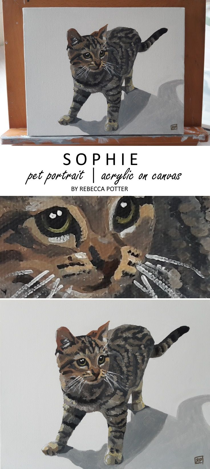 Cat Pet Portrait. Sophie the kitten painted in Acrylic on Canvas 8 x 10 by Rebecca Potter. June 2017 [SOLD]