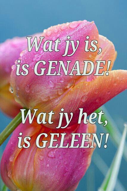 Wat jy is, is net genade...wat jy het is net geleen... #Afrikaans #mercy #goedheidGods