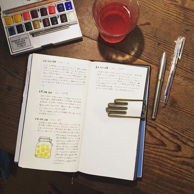 梅酒を漬けたり、ジンジャーシロップを作ったり、季節の食べものを楽しんでいます。 今朝の手帳タイムのお供は自家製しそジュース。 * #トラベラーズノート #travelersnote #travelersnotebook #midoritravelersnote #mtn #文房具 #stationary #手帳 #手帖 #ライフログ #lifelog #月光荘 #書く  #PARKER #万年筆 #muji #水彩絵の具 #透明水彩 #水彩 #絵の具 #のら日記
