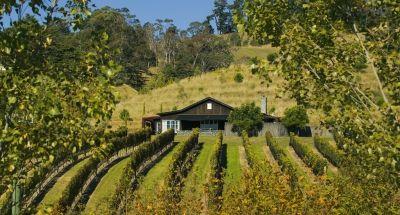 Black Barn Vineyard