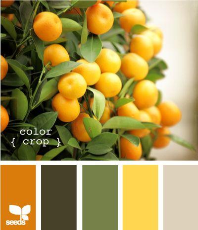 color oranger