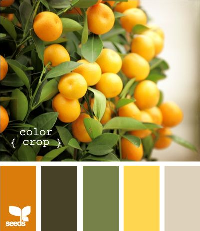 Ooh, maybe this should be my kitchen color scheme.  My counter tops are that shade of yellow.