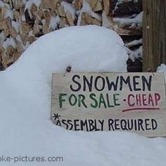 """Résultat de recherche d'images pour """"snow humor"""""""
