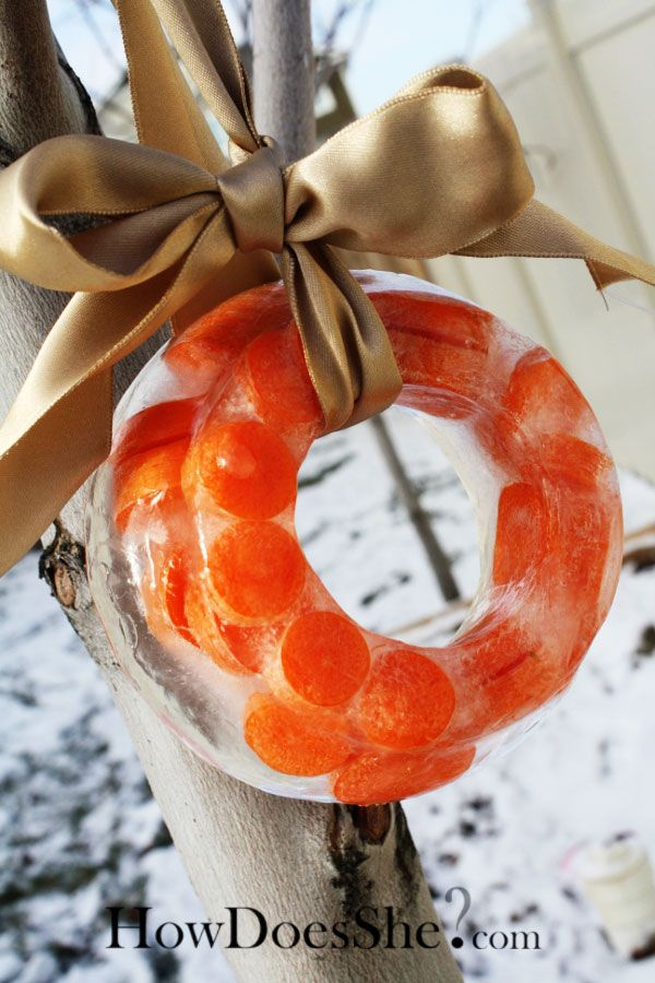 Carrot Ice Wreath... leave out for Santa's Reindeer