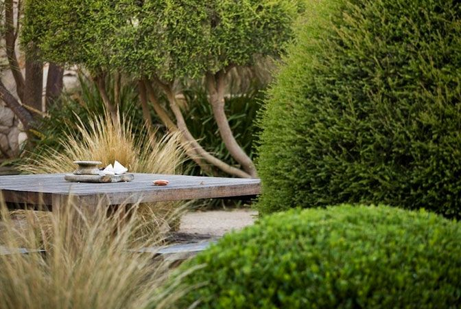 Ornamental grasses work so well with clipped hedges.
