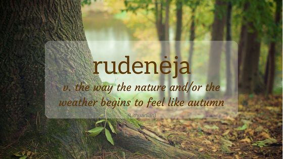 Nature Word of the Month - October 2017