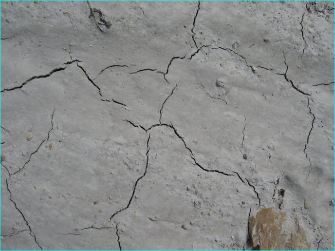 18 Seasoned Though Cracked Ground Textures