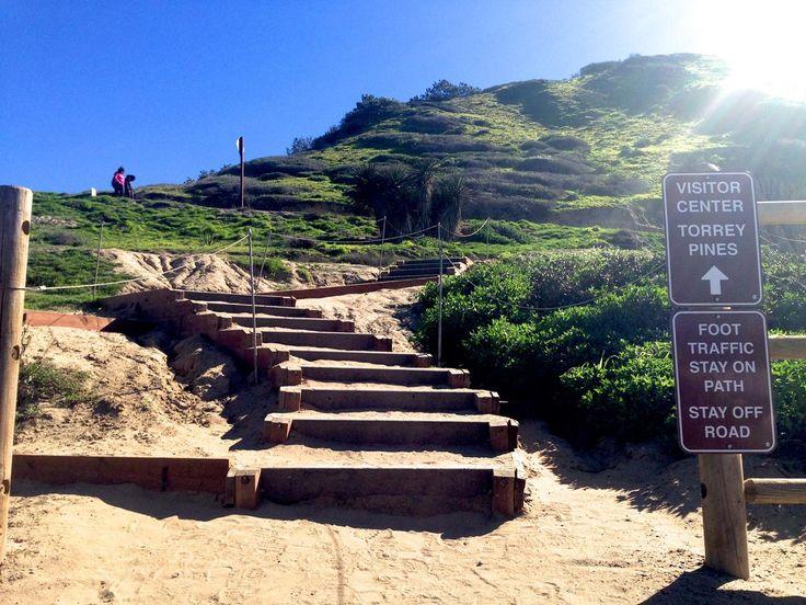 5 Best Hikes Trails In La Jolla | Torrey Pines reserve
