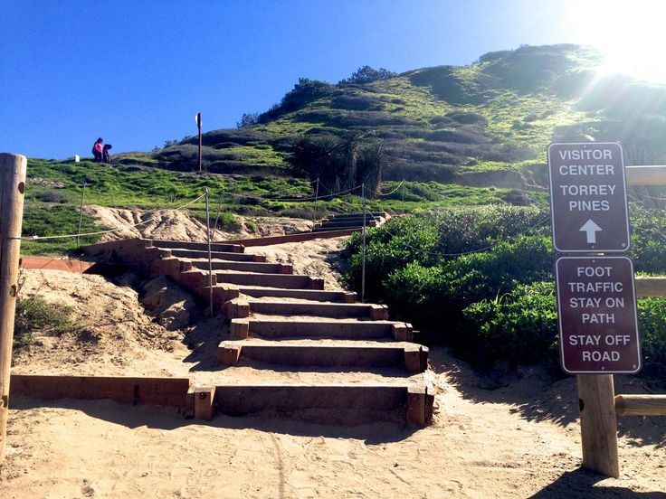 5 Best Hikes Trails In La Jolla | Torrey Pines reserve