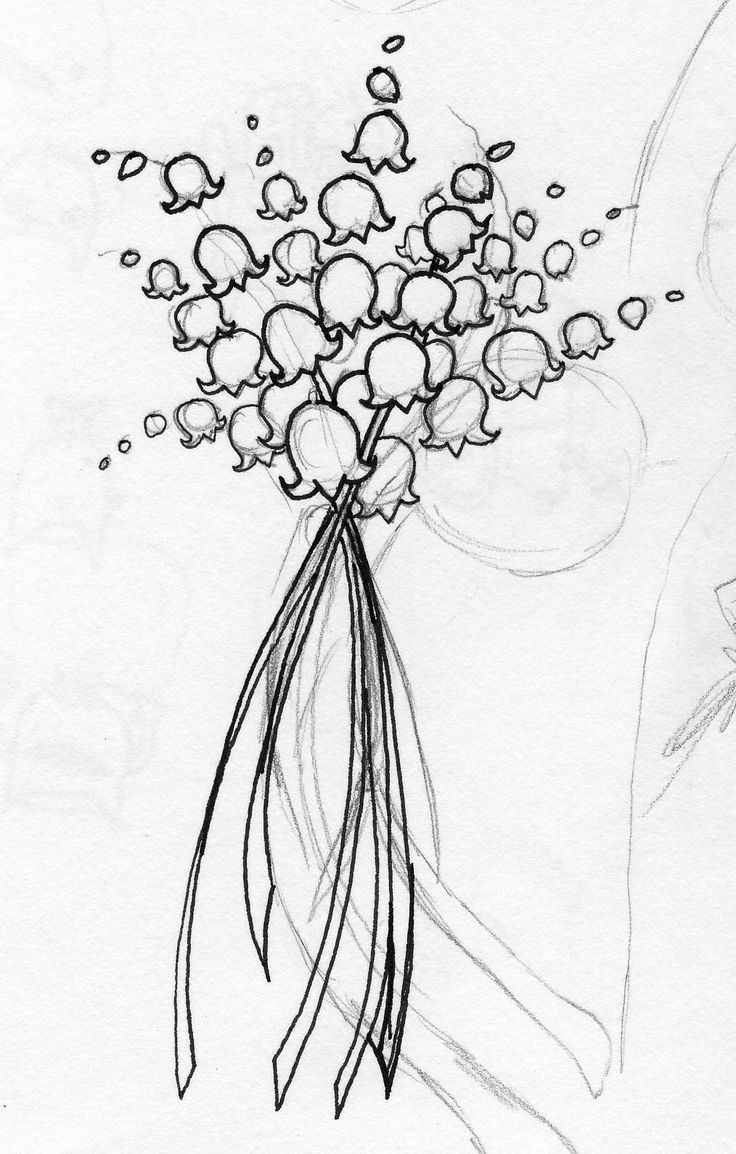lily of the valley drawing lily of the valley drawing