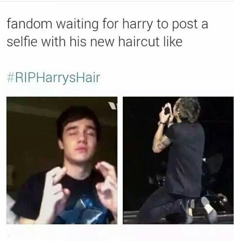 One Direction Funny Group Pictures 17 Best images ...