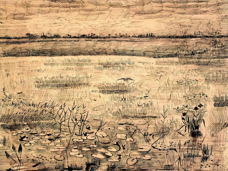 Vincent van Gogh | Marsh with Water Lilies