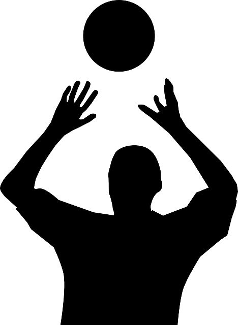 Free Image On Pixabay Volleyball Player Silhouette