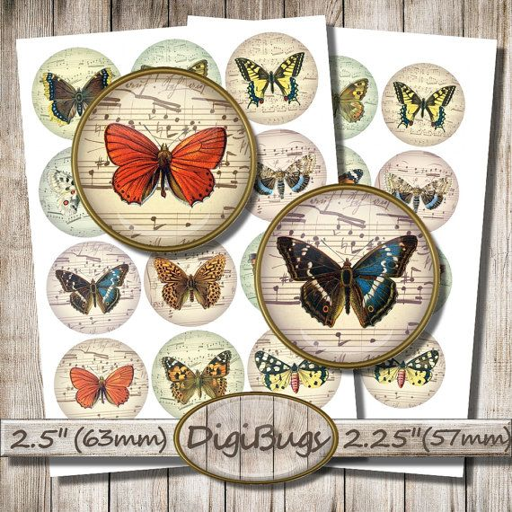 Butterfly Illustrations, Digital Collage Sheet, 2.5 inch and 2.25 inch Circles, Round Butterfly Images, Printable file, Instant Download, a5