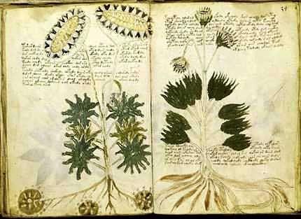 #HeyUnik  Ini dia Buku Paling Misterius di Dunia #Misteri #Sejarah #Unik #YangUnikEmangAsyik