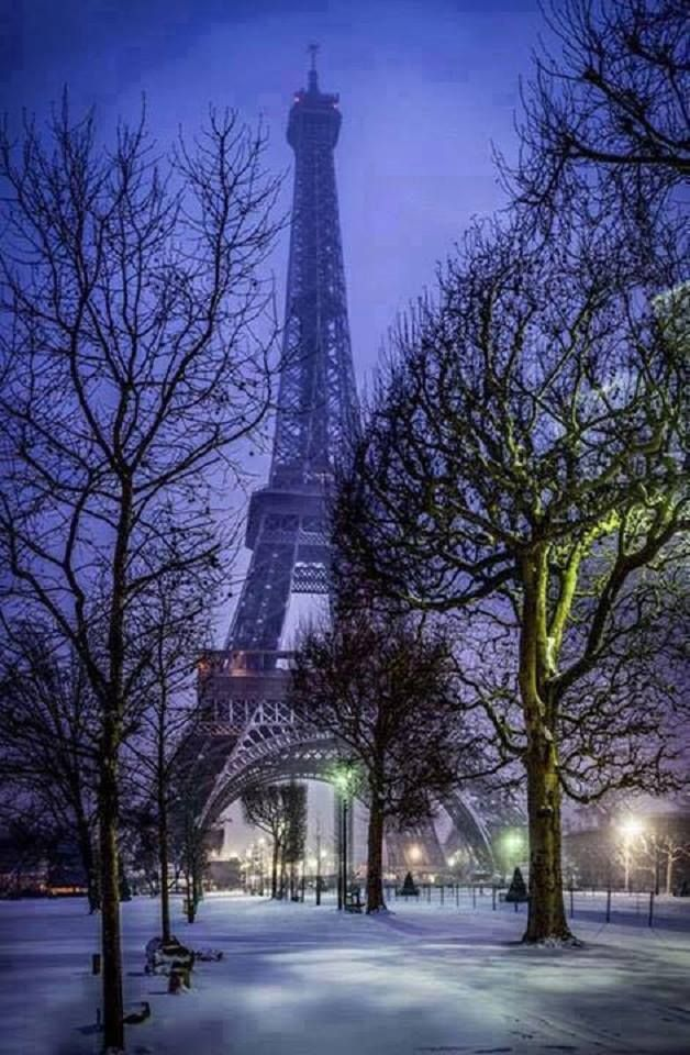 Winter in Paris, France