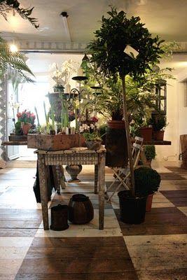 Hege Greenall-Scholtz: Tetbury visit: Twig Florist