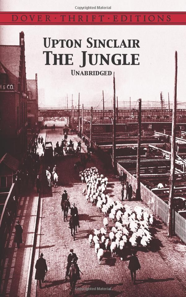 What is the main idea/thesis of The Jungle?