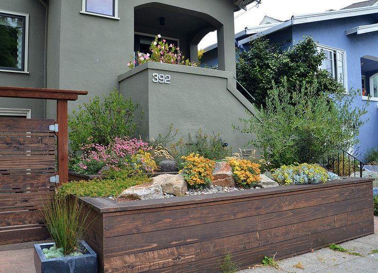 165 best california native plants usda zone 9b images on pinterest garden ideas landscaping and landscaping ideas