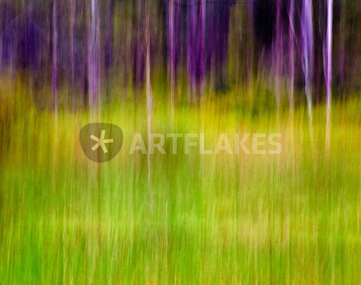 """Mitchell Park ~ An Impressionist View I"" Photography art prints and posters by Adriana Glackin - ARTFLAKES.COM"