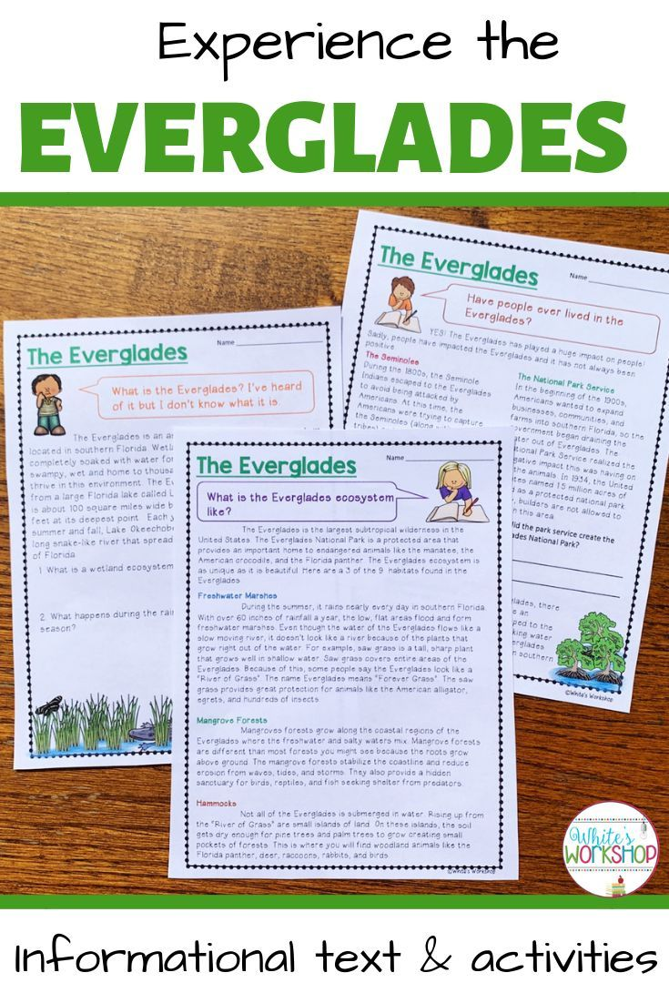 small resolution of Florida Social Studies students will find the Everglades informa…   Informational  texts activities