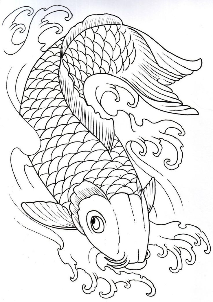 Koi outline decided not to add any water to this one for Koi fish outline