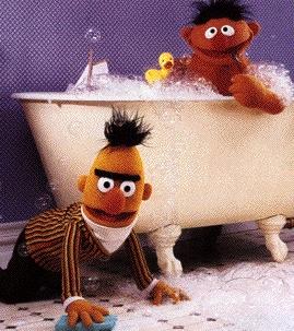 Bert en ernie, jeugdsentiment
