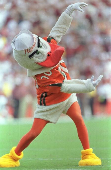 "University of Miami Hurricanes - Sebastian ""Give Me a C!"""