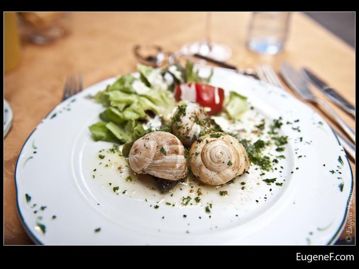 Snail #Food #freewallpapers