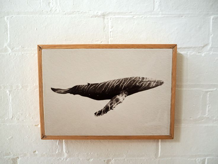 Limited edition whale print by artist Mark De Koning. Print available to buy on stone and reclaimed timber. Visit www.imogenstone.com.au for more details.