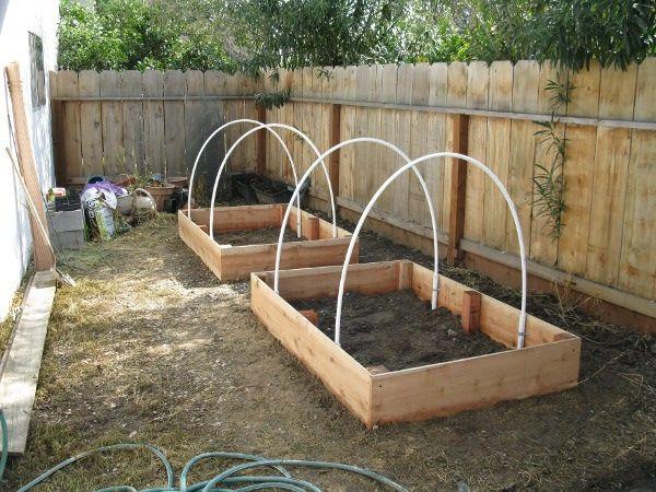 Pipe for bird netting over strawberry plants.Trellis